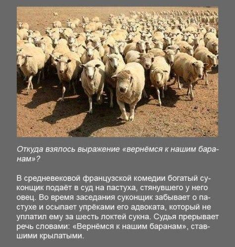 http://s3.uploads.ru/t/EwHNs.jpg