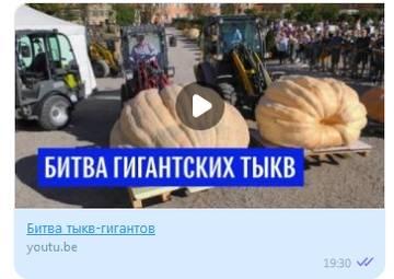 http://s3.uploads.ru/t/FEbHI.jpg