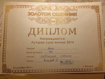 http://s3.uploads.ru/t/FVm1J.jpg