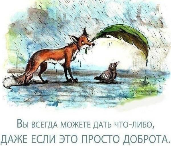 http://s3.uploads.ru/t/FcWpT.jpg