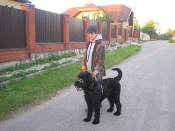 http://s3.uploads.ru/t/FrfES.jpg