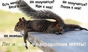 http://s3.uploads.ru/t/FvRL5.jpg
