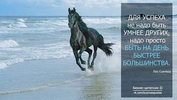 http://s3.uploads.ru/t/G3Muw.jpg