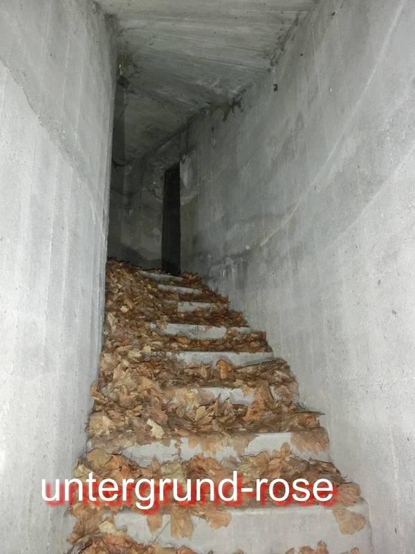 http://s3.uploads.ru/t/G46cg.jpg