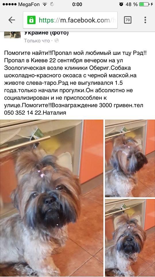 http://s3.uploads.ru/t/G4NsJ.jpg