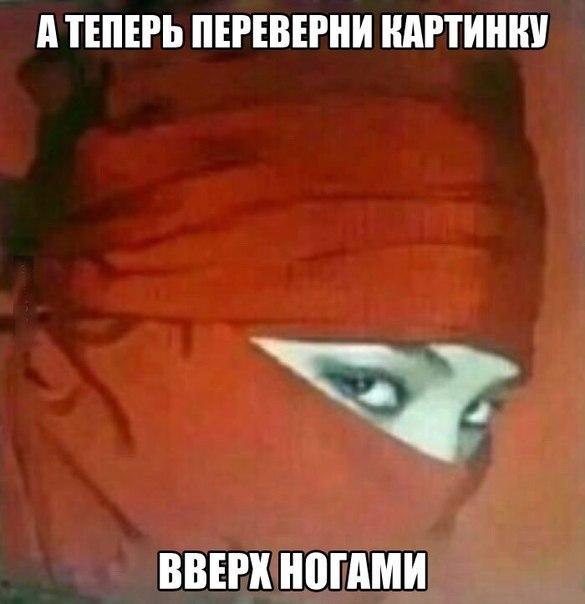http://s3.uploads.ru/t/G6ruL.jpg