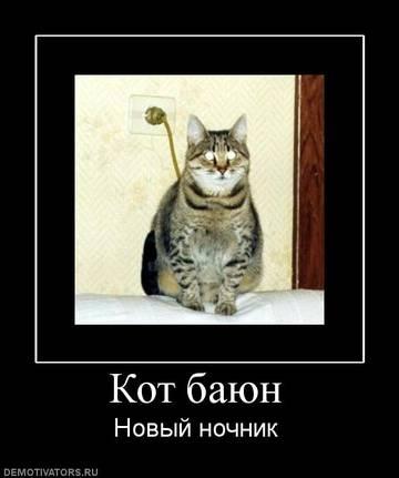 http://s3.uploads.ru/t/GBbaI.jpg