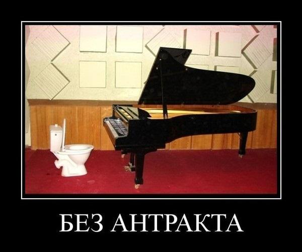 http://s3.uploads.ru/t/GC78f.jpg