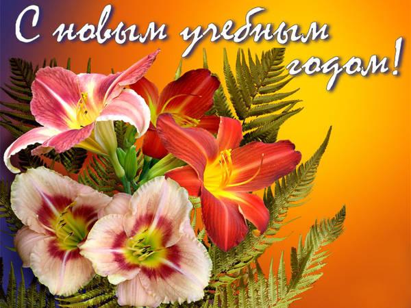 http://s3.uploads.ru/t/GL6nl.jpg