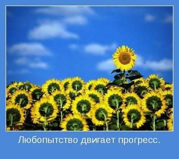 http://s3.uploads.ru/t/GY8wC.jpg