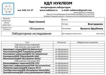 http://s3.uploads.ru/t/GsQbk.jpg