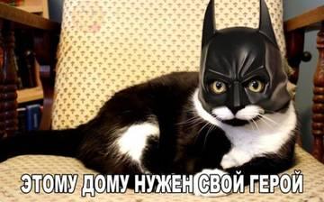 http://s3.uploads.ru/t/H0FjW.jpg
