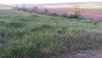 http://s3.uploads.ru/t/HGaMz.jpg