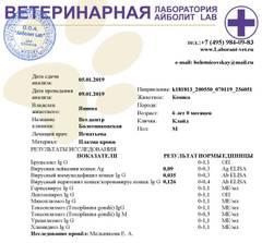 http://s3.uploads.ru/t/HmArj.jpg