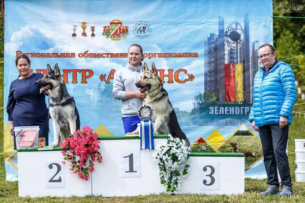 МОНО ВЕО КЧК+ 3 САС 10-11 июня г.Зеленоград HpCWB