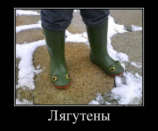 http://s3.uploads.ru/t/IMR4x.jpg