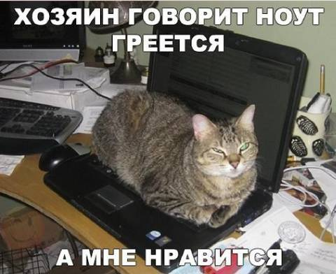 http://s3.uploads.ru/t/J2hkK.jpg