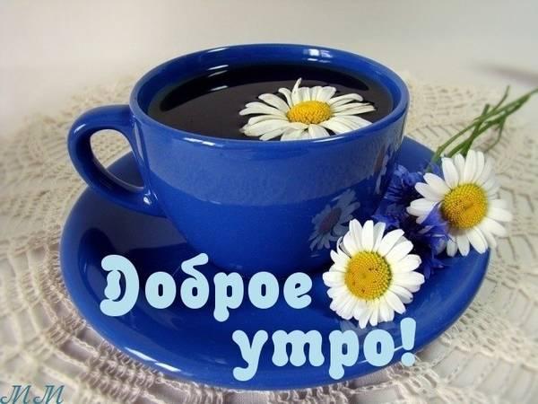 http://s3.uploads.ru/t/JKqtX.jpg