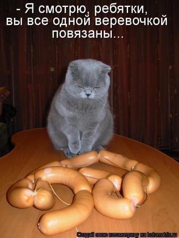 http://s3.uploads.ru/t/JNAGd.jpg