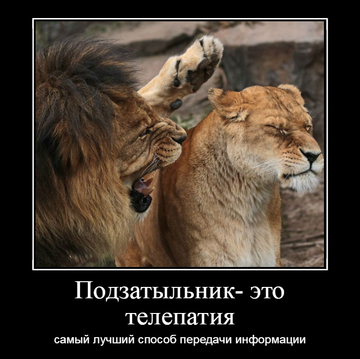 http://s3.uploads.ru/t/JQi9M.png