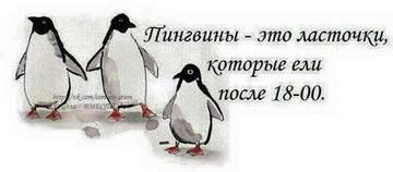 http://s3.uploads.ru/t/JdDkp.jpg