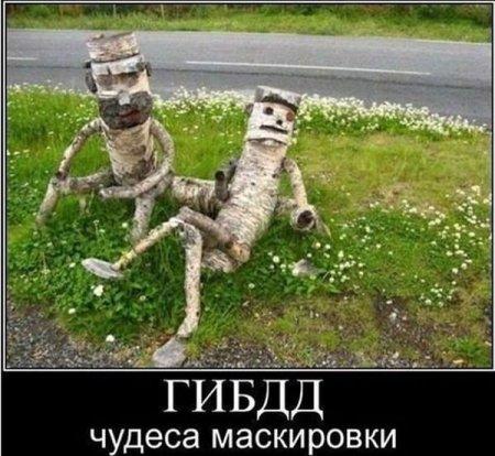 http://s3.uploads.ru/t/K08DH.jpg
