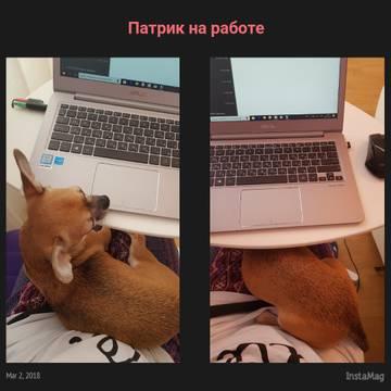 http://s3.uploads.ru/t/K3d6s.jpg