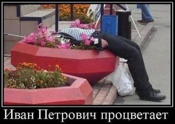 http://s3.uploads.ru/t/KIsxD.jpg