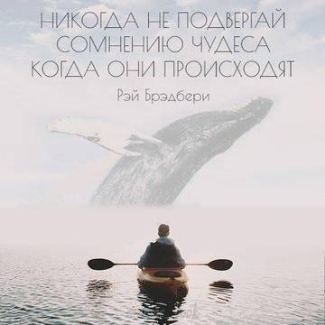 http://s3.uploads.ru/t/KXGko.jpg