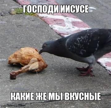 http://s3.uploads.ru/t/KxN87.jpg