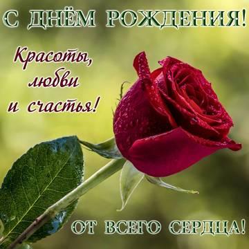 http://s3.uploads.ru/t/LmW34.jpg