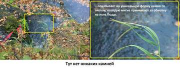 http://s3.uploads.ru/t/LpeE4.jpg