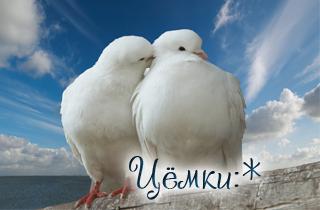 http://s3.uploads.ru/t/M3rlS.jpg