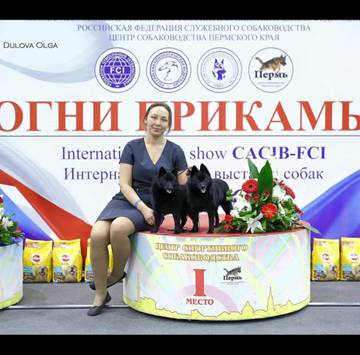 http://s3.uploads.ru/t/MqbRu.jpg