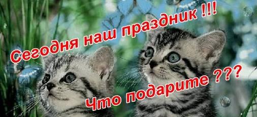 http://s3.uploads.ru/t/MtLG9.jpg