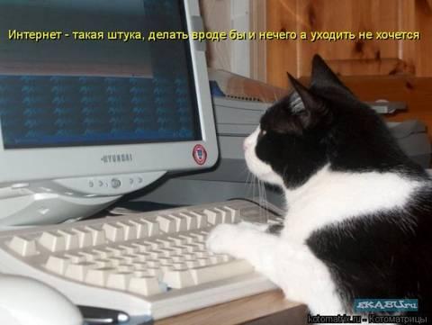 http://s3.uploads.ru/t/My8fm.jpg