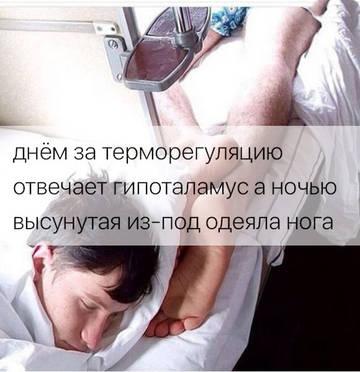 http://s3.uploads.ru/t/N1ocC.jpg