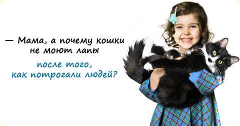 http://s3.uploads.ru/t/NKbHo.jpg