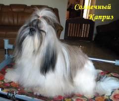 http://s3.uploads.ru/t/NKua5.jpg