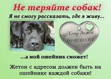 http://s3.uploads.ru/t/NVMS9.jpg