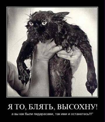 http://s3.uploads.ru/t/Nk8iq.jpg