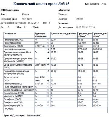 http://s3.uploads.ru/t/OV7aP.jpg