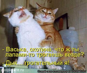 http://s3.uploads.ru/t/Od1yS.jpg
