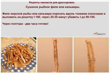 http://s3.uploads.ru/t/OeXaL.jpg