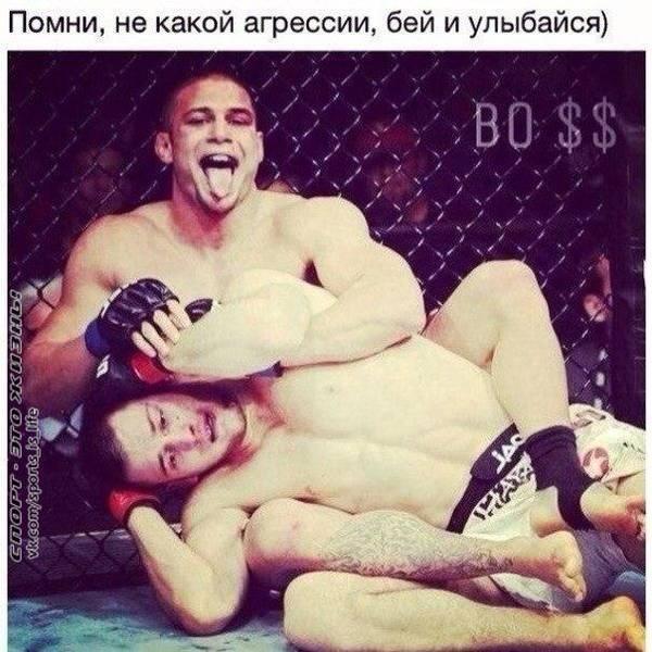 http://s3.uploads.ru/t/PCTf9.jpg