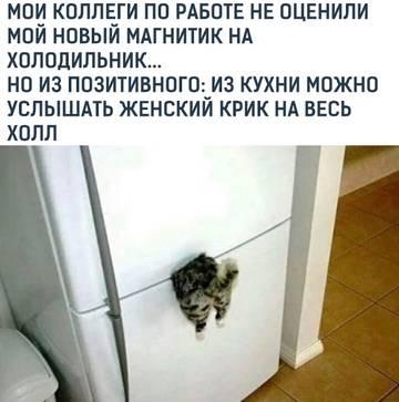http://s3.uploads.ru/t/PE0oA.jpg