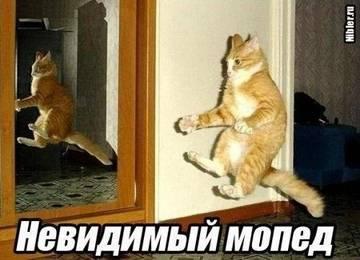 http://s3.uploads.ru/t/PGWUS.jpg