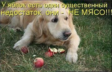 http://s3.uploads.ru/t/Pv30J.jpg