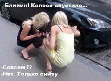 http://s3.uploads.ru/t/QFqDJ.jpg