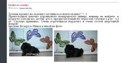 http://s3.uploads.ru/t/QJsN1.jpg